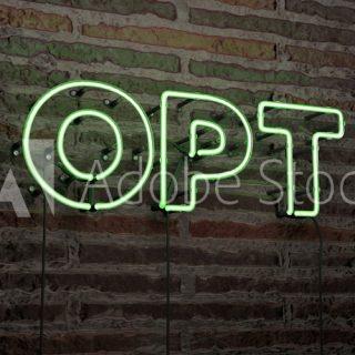 OPT 소지자 취업이민